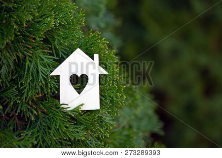 Wooden House Icon With Hole In Form Of Heart Surrounded By Green Thuja Conifer Branches Outdoor. Con