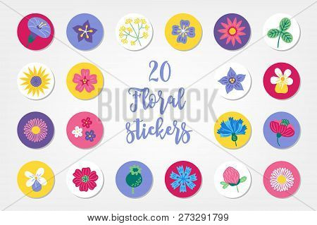 Set Of Twenty Summer Stickers With Bindweed, Bellflower, Clover, Sunflower, Viola, Daisy, Poppy, Cor