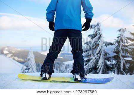 Back View Of Snowboarder Legs On His Board Before Backcountry Freeride Session In The Forest. Mans F