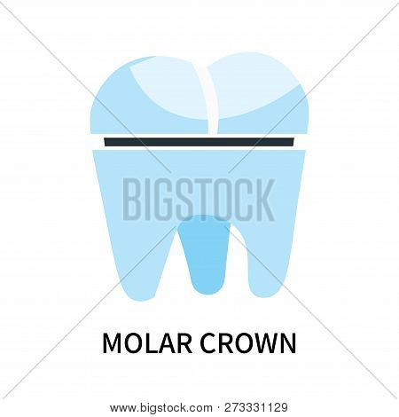 Molar Crown Icon Isolated On White Background. Molar Crown Icon Simple Sign. Molar Crown Icon Trendy