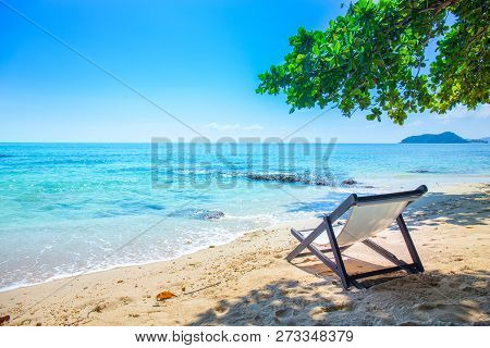 Beach Chair Is Located Under The Tree.