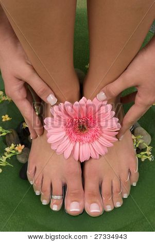 Spa treatment with beautiful Gerbera daisy