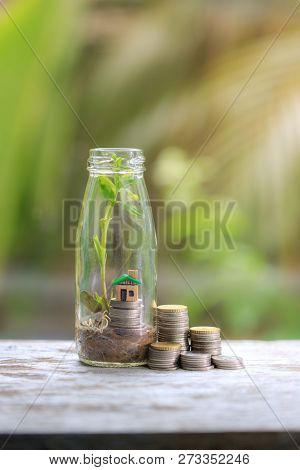 Home Insurance-the House Is Placed On A Coin In A Glass Jar With Growing Plants.placed On A Wood Tab