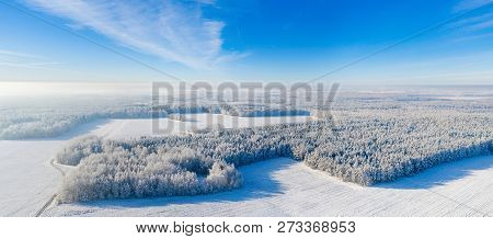 Winter Panorama With Clear Blue Sky. White Forest Covered With Snow From Above. Vivid Winter Landsca