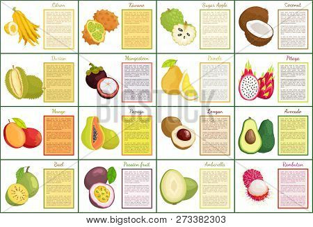Citron Kiwano And Coconut, Sugar Apple Tropical Fruit Set Of Posters With Text Sample. Avocado And M