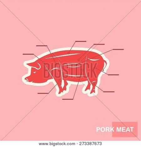 Poster Cut Pork Meat Vector Photo Free Trial Bigstock