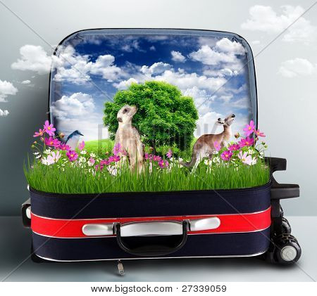 Red suitcase with green nature landscape in it poster