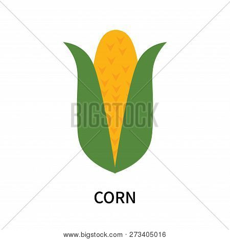 Corn Icon Isolated On White Background. Corn Icon Simple Sign. Corn Icon Trendy And Modern Symbol Fo