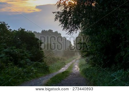 Rural Landscape With Empty Countryside Dirt Wet Road. Dirt Road Leading Through Foggy Forest In Keme