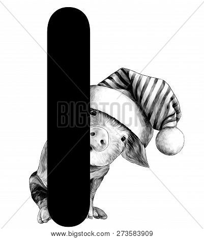 Little Christmas Pig In A Big Hat With A Pompom Peeps Out From Behind The Letter I Part Of The Word