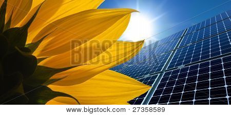 Solar panels and Sunflower against a sunny sky poster
