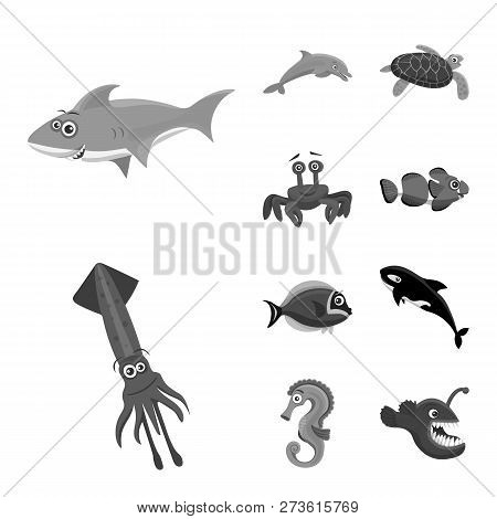 Vector Illustration Of Sea And Animal Icon. Set Of Sea And Marine Stock Symbol For Web.
