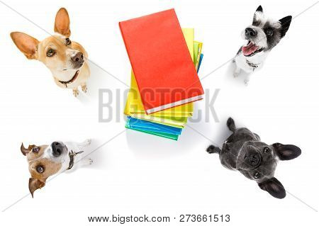 Couple Of Office Worker Businessman Dogs  With Telephone, Phone  Notepad, Pencil, Isolated On White