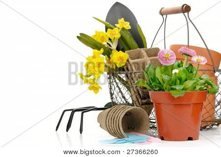 Gardening tools and flowers on the white