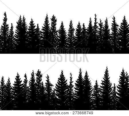 Set Of Vector Horizontal Banner Silhouettes Of Coniferous Treetops Forest (spruce,fir, Fir-tree).