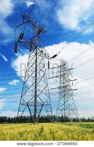 High voltage power lines above wheat field