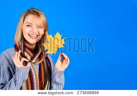 Autumn. Happy Woman With Maple Leaf. Smiling Woman With Autumn Leaf. Yellow Maple Leaf. Sexy Woman H