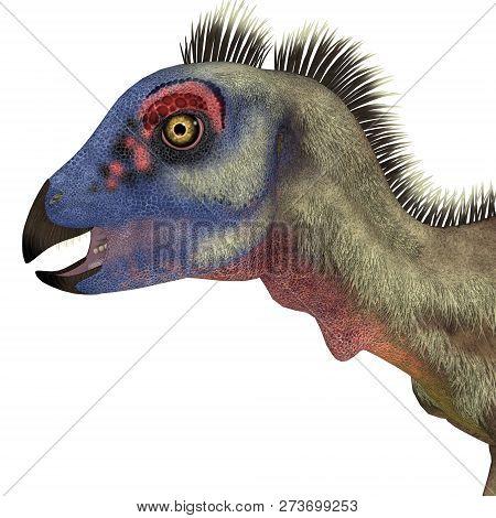 Hypsilophodon Dinosaur Head 3d Illustration - Hypsilophodon Was A Omnivorous Ornithopod Dinosaur Tha