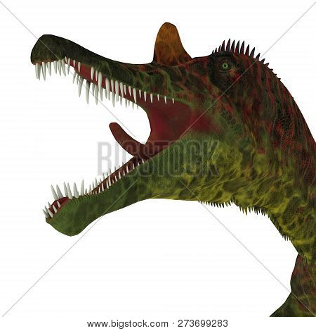 Ichthyovenator Dinosaur Jaws 3d Illustration - Ichthyovenator Was A Carnivorous Theropod Dinosaur Th