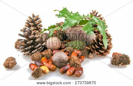 Christmas Decoration Background Color Image Stock Photos