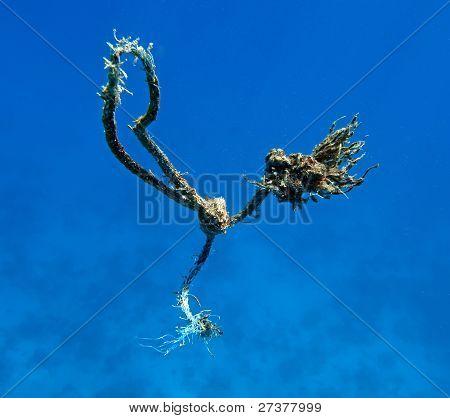 Broken Anchor Line