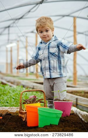 New Technology In Farming. Innovation In New Technology In Farming. Small Boy Farming With New Techn