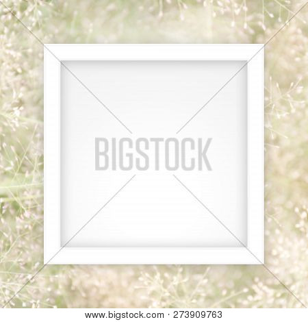 Empty White Frame Template On Soft Blurred Soft Grass Nature Background, White Rectangle Frame Blank
