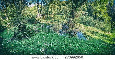 Seasonal Photo Of City Park In Nitra, Slovak Republic. Panoramic Photo. Natural Scene. Analog Photo