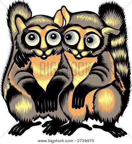 Isolated vector image of a happy couple of lemurs decoratively painted as illustration of love allegory. poster