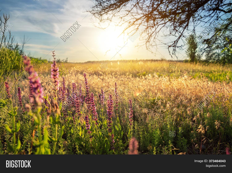 Beautiful Scenic Image Photo Free Trial Bigstock
