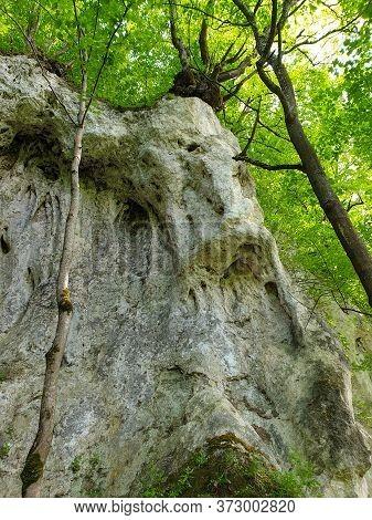 Limestone Rocky Formation At Pietrele Vorbitoare Waterfalls, Lush Green Vegetation Growing On Limest
