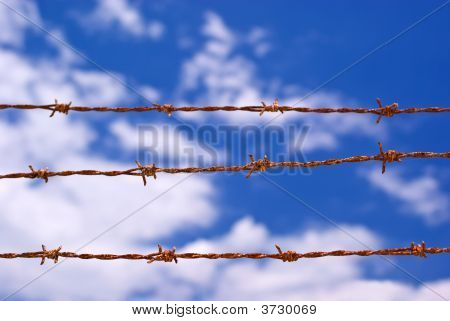Three Strands Of Barbed Wire