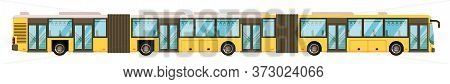 Articulated Bus. Long Articulated Bus Isolated On White Background. Public Passenger Commuter Vector