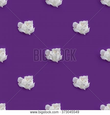 Seamless Pattern With White Rose Buds Just Ready To Burst On Violet Background. Photographic Collage