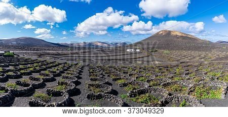 Landscape With La Geria Vineyards Region, Lanzarote, Canary Islands