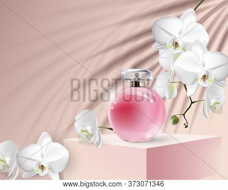 Background For Cosmetic Product Branding, Identity And Packaging Inspiration.beautiful Womens Perfum