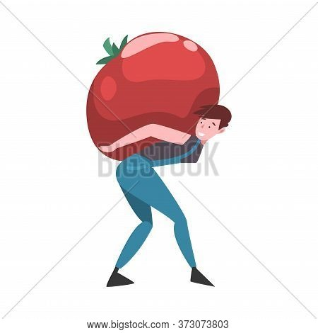 Young Man Carrying Big Ripe Red Tomato, Male Farmer Character With Natural Organic Vegetable Vector