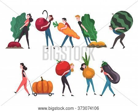 People Carrying Giant Vegetables And Fruits, Male And Female Farmers Characters Harvesting Vector Il