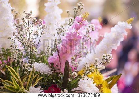 Fresh Flower Background