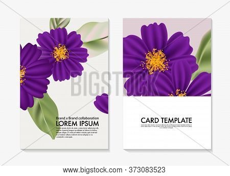 Watercolor Cosmos Flower , Botanical Wild Field Floral Template. Custom Flower Diy Card, Printable B