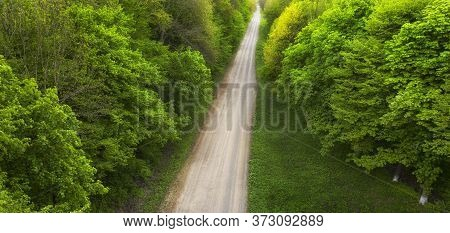 Top View Of A Dirt Forest Road.