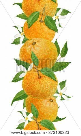 Watercolor Hand Drawn Seamless Vertical Border Illustration Of Bright Orange Tangerine Mandarine Cit