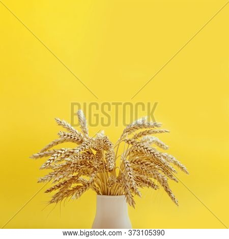 Autumn Harvest Of Grain Crops. Bunch Stems With Ears Of Wheat In White Vase On Yellow Background Wit