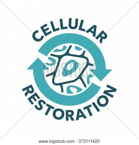 Cellular Restoration Formula Sign - Epidermis Structure Restore  - Anti-aging Cosmetics And Cosmetol