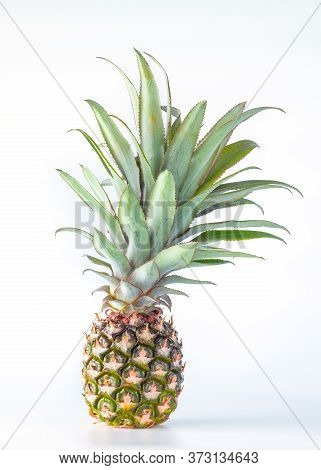 Pineapple Fruit Isolated On White Background With Clipping Path.