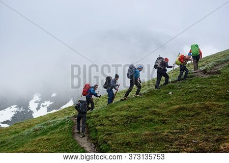 Group Of Male Hikers With Backpacks Using Trekking Sticks While Climbing Grassy Hill. People Walking