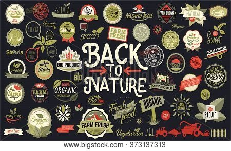 Organic Food, Farm Fresh And Natural Product Stickers, Badges, Logo Collection For Food Market, Ecom