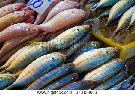 Many Type Colorful Of Seafood Fish Sell In Fishery Local Market