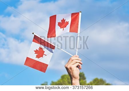 Raised Hand With Two Waving Canadian Flag Against Blue Sky. Happy Canada Day. 1st July Celebrate Nat