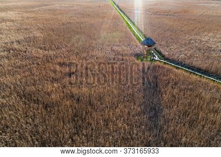 Marshes and Reeds wetland from top view aerial drone photo shoot.